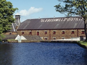 Bushmills Irish Whiskey Black Bush Distillery