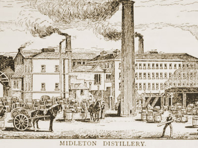 Midleton Distillery Midleton 1973 26 Year Old Port Finish Irish Whiskey